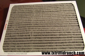 Dallas air filter, after two weeks