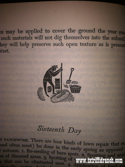 Sixteenth Day