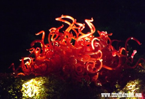 Chihuly 27