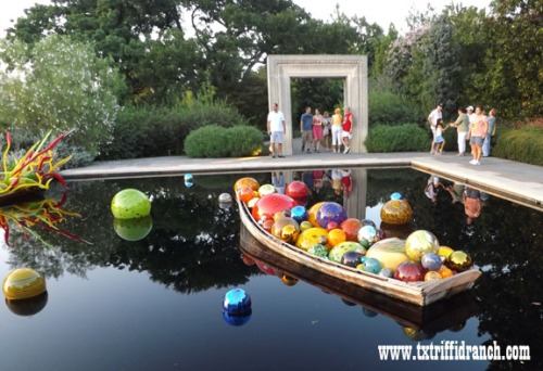 Chihuly Boat 3