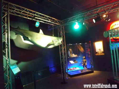 Planet Shark display