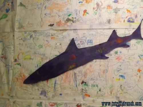 Shark mural and cutout