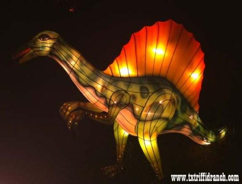 Chinese Lantern Festival - Ouranosaurus