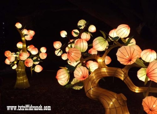 Chinese Lantern Festival - trees