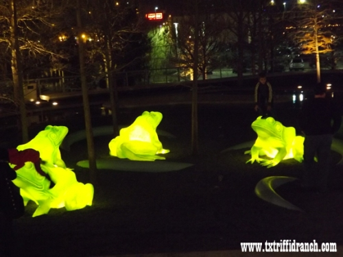 Perot Museum's glowing frogs