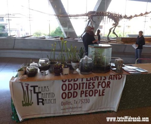 Triffid Ranch display at the Perot