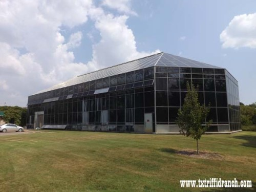 FWBC Conservatory