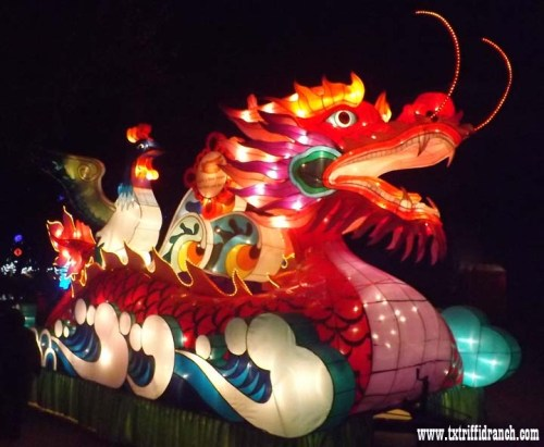 Chinese Lantern Festival in Dallas