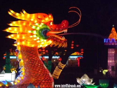 Chinese Lantern Festival - Dragon Boat
