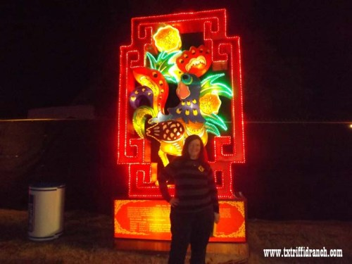 Chinese Lantern Festival - Rooster
