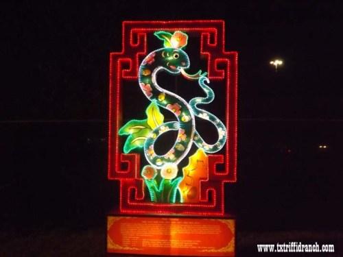 Chinese Lantern Festival - Snake