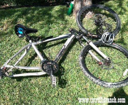 Dead bike